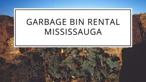 Guide about Best Disposal Bin Rental Services in Mississauga