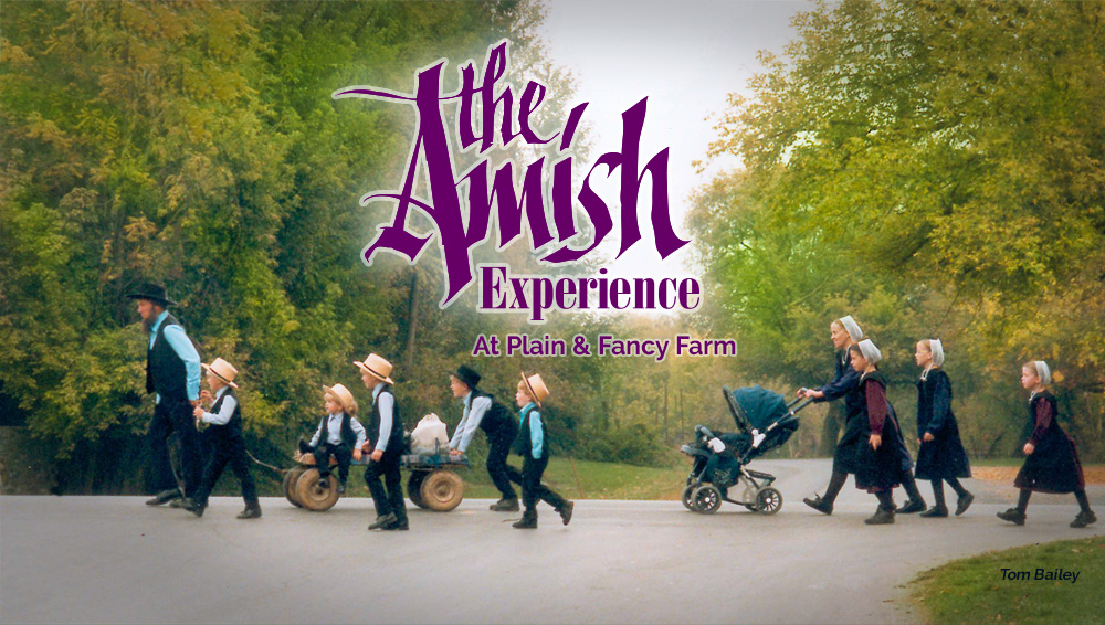 the amish experience at
