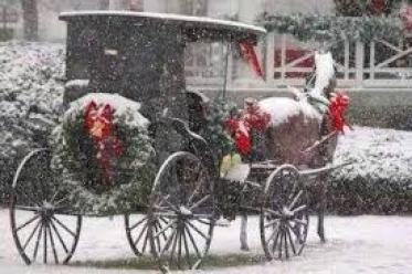 Festive Amish horse and buggy for Christmas