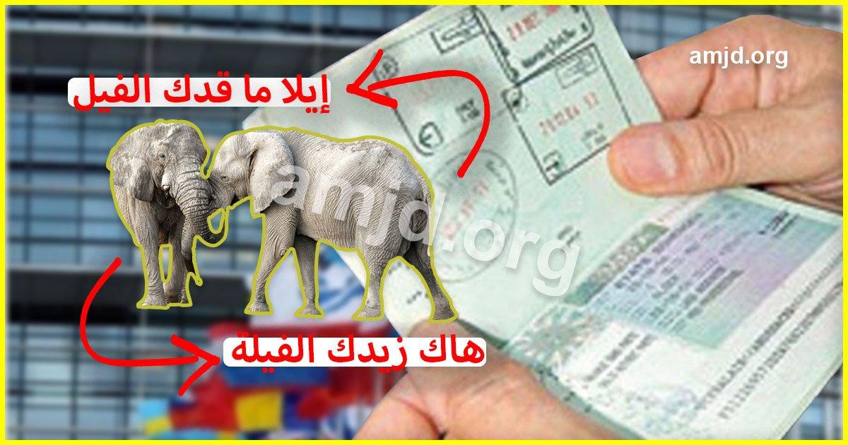 بحلول رمضان المفوضية الأوروبية تقترح القيام بتعديلات على فيزا شنغن (الى ماقدك الفيل نزيدك الفيلة)