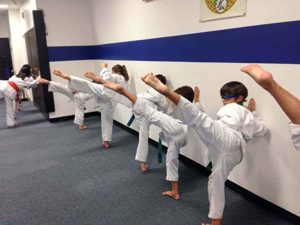 https://i0.wp.com/amkorkarate.com/wp-content/uploads/2015/04/Aston-Wall-Kicks.jpg