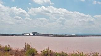 Rötlich schimmernde Salzfelder