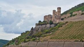Blick auf Burg Ehrenfels
