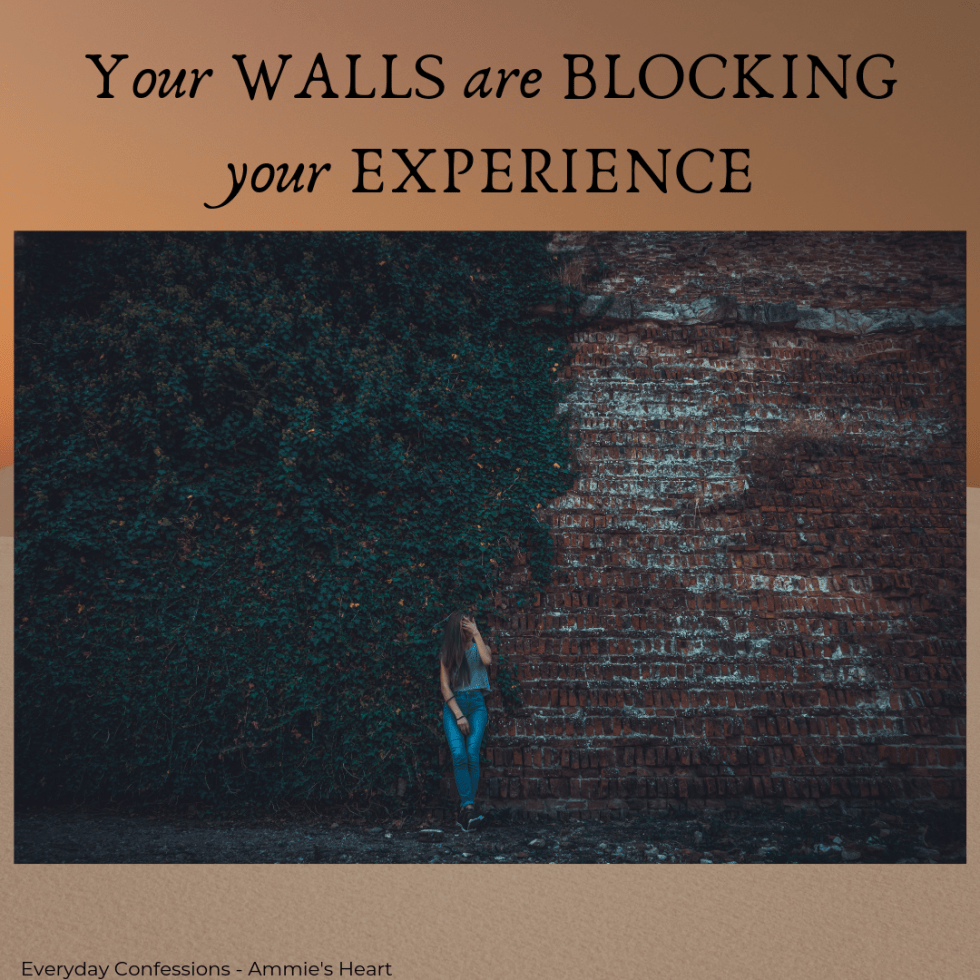 Your WALLS are Blocking Your EXPERIENCE Insta post