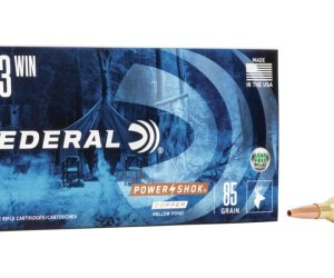 Buy Federal Premium Power-Shok Copper 243 Win 85g CHP online