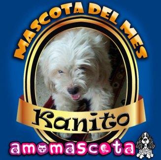 MASCOTA-DEL-MES-KANITO
