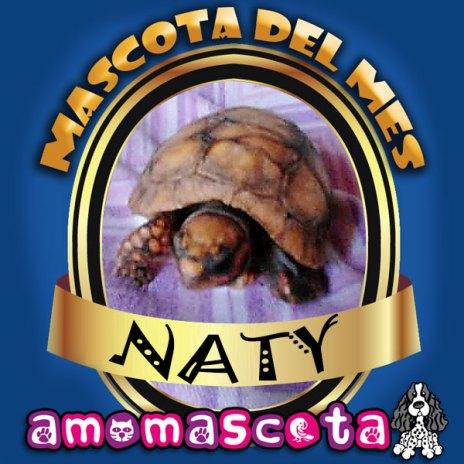 MASCOTA-DEL-MES-NATY