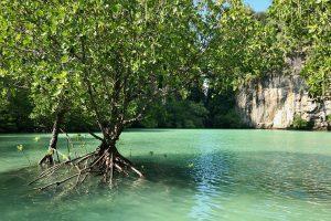 Amon Tour Krabi Thailande - 239