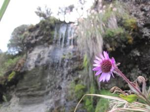 Waterfall at Laguna Negra.