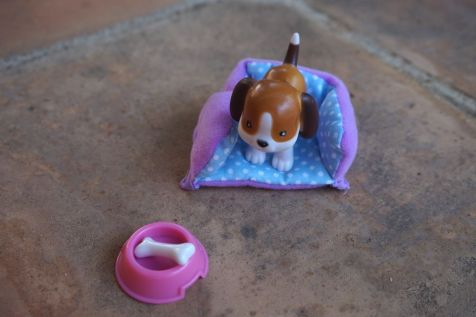 lottie-perro