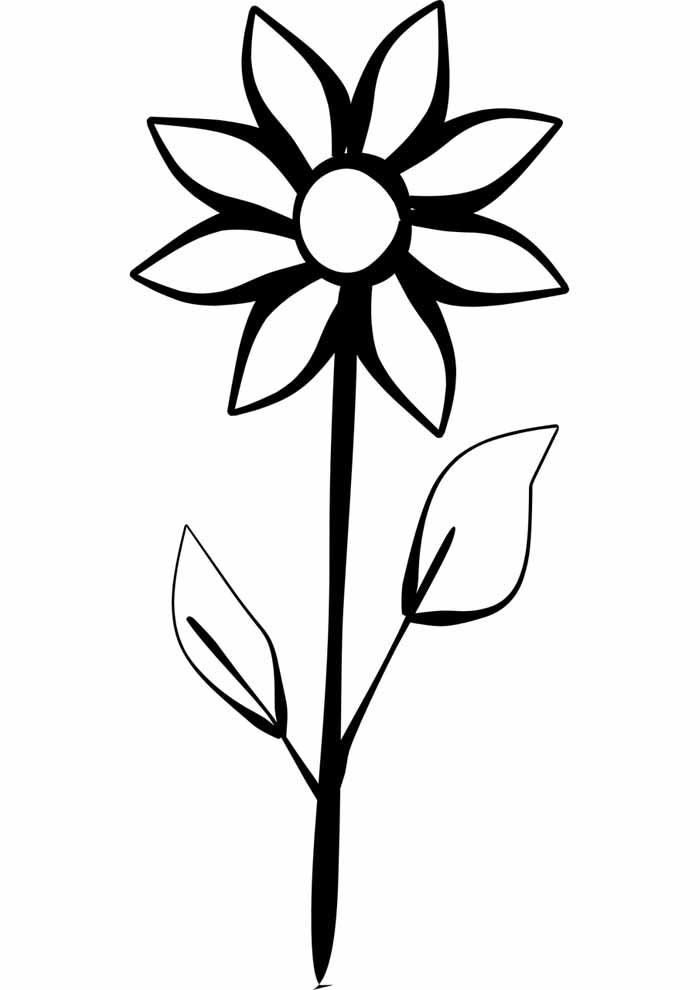 Desenhos e imagens para imprimir e pintar de unicórnios. 40 Desenhos de Flores para Colorir   Amor de Papéis