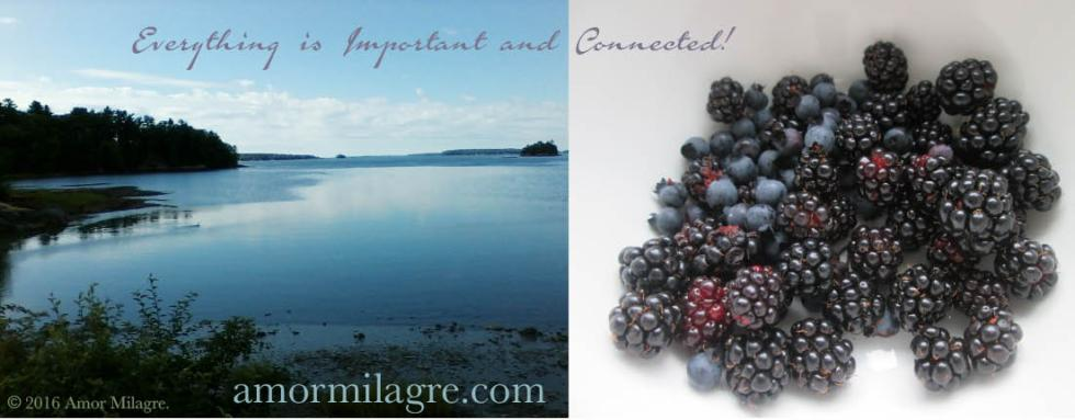 Sweet Cacao Recipes, Artwork, & Photography by Amor Milagre. amormilagre.com Visit our SHOP!