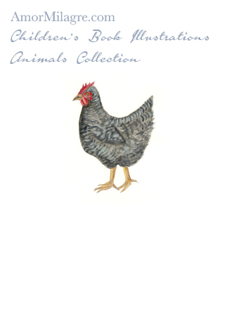 Amor Milagre Children's Book Animals Illustrations The Black Chicken Hen beautiful for all spaces and ages, especially in a nursery amormilagre.com