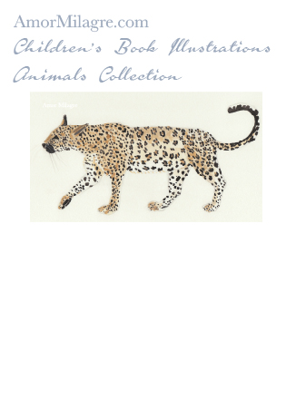 Amor Milagre Children's Book Animals Illustrations The Leopard 1 nursery amormilagre.com