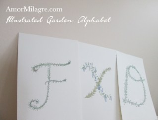 Amor Milagre Illustrated Garden Alphabet Letter FXD custom initials name word amormilagre.com