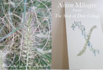 Art Design The Shop at Dove Cottage 13 amormilagre.com Amor Milagre