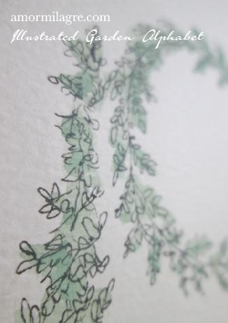 Illustrated Garden Alphabet Letter D-d Amor Milagre amormilagre.com