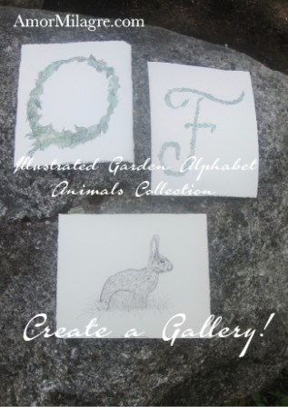 Illustrated Garden Alphabet Letter O F Bunny in the Grass Amor Milagre amormilagre.com