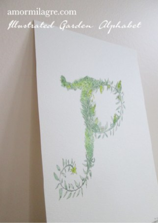 Illustrated Garden Alphabet Letter P Amor Milagre amormilagre.com