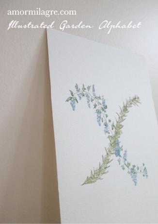 Illustrated Garden Alphabet Letter X Amor Milagre amormilagre.com