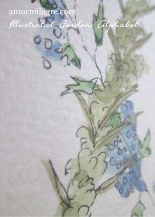 Illustrated Garden Alphabet Letter X Details Amor Milagre amormilagre.com