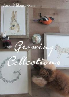 Amor Milagre Create an Art Gallery! GROWING COLLECTIONS baby child men women amormilagre.com