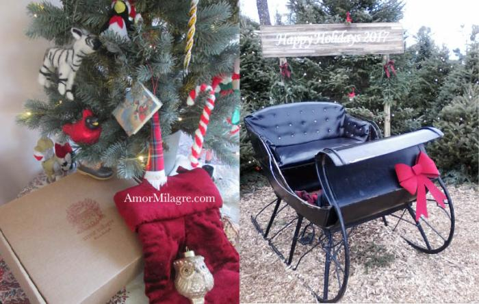 Amor Milagre Holiday Boxes Christmas Tree Presents Santa Sleigh Gifts Giving organic journal amormilagre.com