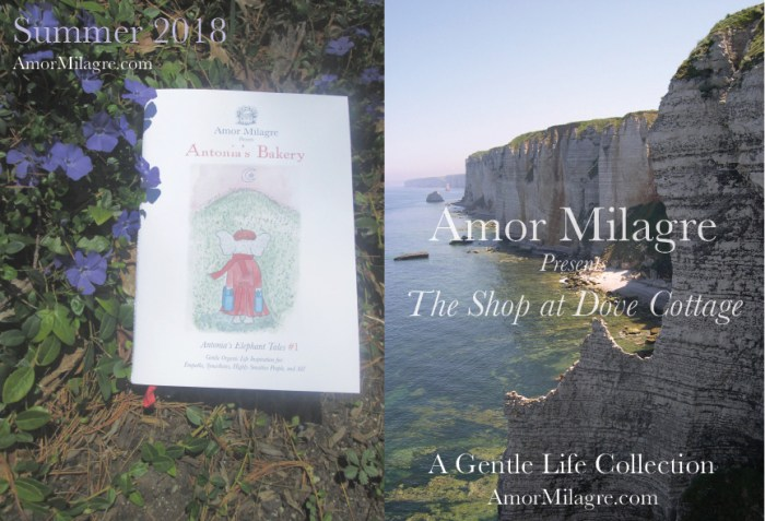 Amor Milagre The Shop at Dove Cottage Homepage Summer 2018 Art Design Organic Life Apparel Baby amormilagre.com
