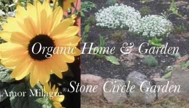 Amor Milagre Presents Stone Circle Garden organic home & garden sunflower amormilagre.com