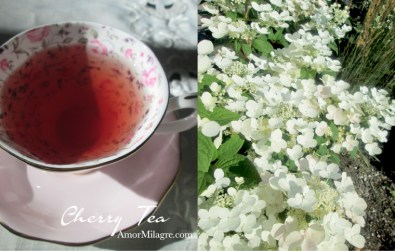 Amor Milagre Cherry Tea & Cacao Pudding Park Organic Vegan, Ethical Books, Royal Albert Teacups, hydrangea, Art & Design amormilagre.com