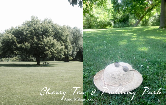 Amor Milagre Cherry Tea & Cacao Pudding Park Organic Vegan, Ethical Books, Trees, Straw Hat, Art & Design amormilagre.com