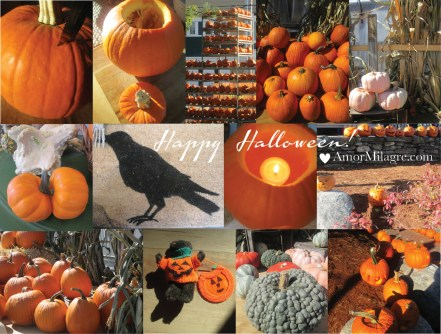 Amor Milagre Happy Halloween Mood 6 2018 Autumn Fall Trees Pumpkins Art Design Organic Vegan Baby & Child Collection amormilagre.com