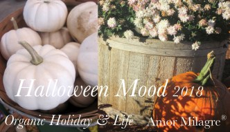 Amor Milagre Presents Halloween Mood 2018 youtube vlog amormilagre.com