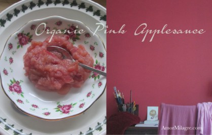 Amor Milagre Cozy November, Pink Applesauce Organic Vegan Non-Toxic Recipe & Apparel Girls Organic Cotton Nightgown amormilagre.com