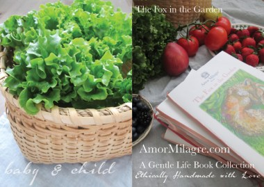 Amor Milagre Presents The Fox in the Garden ethical organic original children's book amormilagre.com nursery bookshop bunny blueberries vegetables vegan lettuce