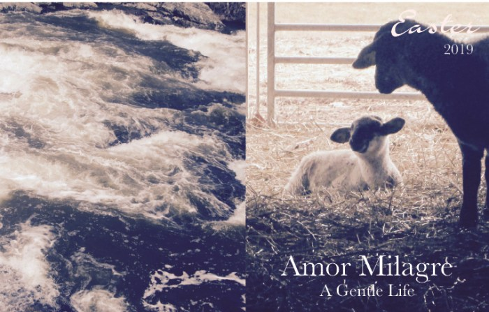 Amor Milagre Easter Photography Art Prints 2019 lamb Pleasures for the Weekend Spring Ethical Organic Gift Shop Handmade Gift Shop Art Vegan Baby & Child amormilagre.com
