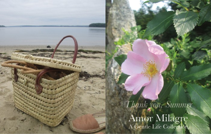 Amor Milagre Colour Mood Late Summer Days Thank you, Summer 2019 Ethical Organic Gift Shop Handmade Gift Shop Art Baby & Child beach picnic wild tea rose ocean amormilagre.com