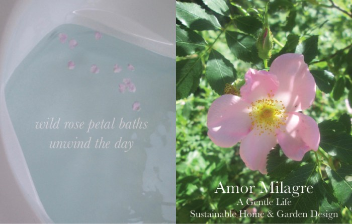 Amor Milagre Custom Built Home Interior Design Moments Goodnight, Dove Cottage 2019 Ethical wild rose petal bath amormilagre.com
