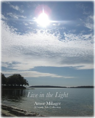 Amor Milagre Shop Live in the Light Ocean Autumn 2019 Collection Amor Milagre amormilagre.com