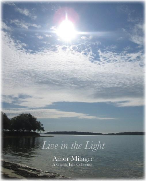 Amor Milagre Shop Live in the Light Ocean Autumn 2019 Collection Amor Milagre amormilagre.com