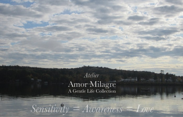 Amor Milagre Ambassador for Positive Change, Let's Redesign to Allow a Healthy World for Sensitive People & All, lake love Ethical Handmade Gift Shop amormilagre.com