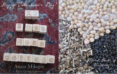 Amor Milagre I Love! Sweet Charity Valentine's Day Sale, Plant Seeds of Positivity! Atelier Art Books Children Parent Ethical Gift Shop letters heart amormilagre.com