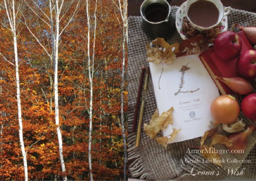 Amor Milagre Presents Leona's Wish 1st Autumn Festival The Love Letter Diaries #2 ethical book series amormilagre.com 8
