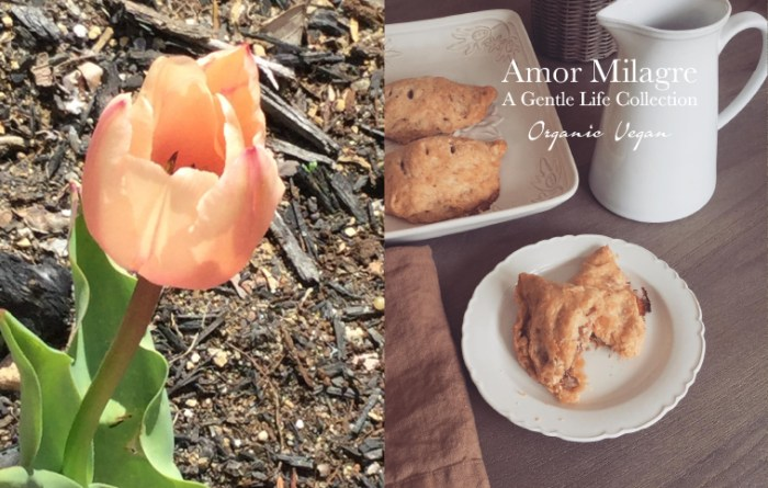 Amor Milagre Cooking Class Quick Tips & Simply Delicious Vegan Organic Food 2020 Tulips & Turnovers amormilagre.com