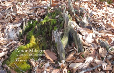 Amor Milagre Faerie Castles Spring Garden Rose Cottage 2020 Ethical Organic Gift Shop amormilagre.com 1