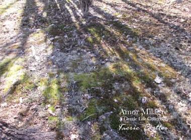 Amor Milagre Faerie Castles Spring Garden Rose Cottage 2020 Ethical Organic Gift Shop amormilagre.com 3