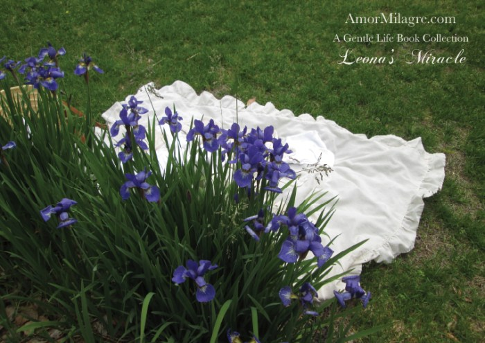 Amor Milagre Leona's Miracle 1st Spring Festival The Love Letter Diaries #4 ethical book series amormilagre.com 10