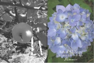 Amor Milagre Summer Sale 2020 Ethical Organic Gift Shop amormilagre.com 1