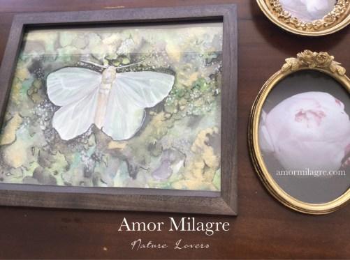 Amor Milagre Nursery Art & Nature Photography Art Print Greeting Card amormilagre.com