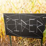 Heidi's Farm Stand and Corn Maze
